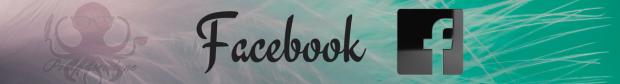Facebook(4)