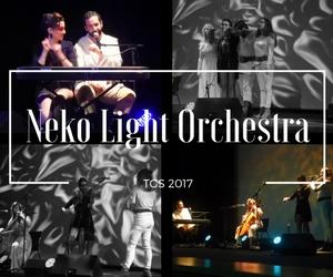 Neko Light Orchestra.jpg